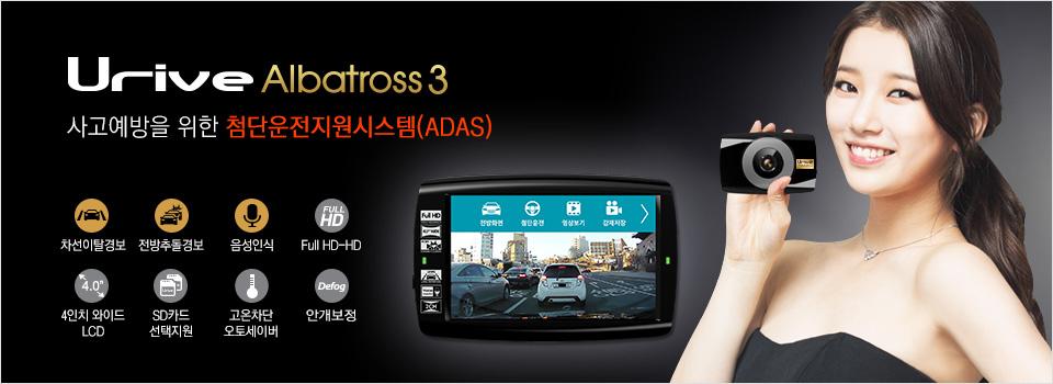 albatross3_img.jpg